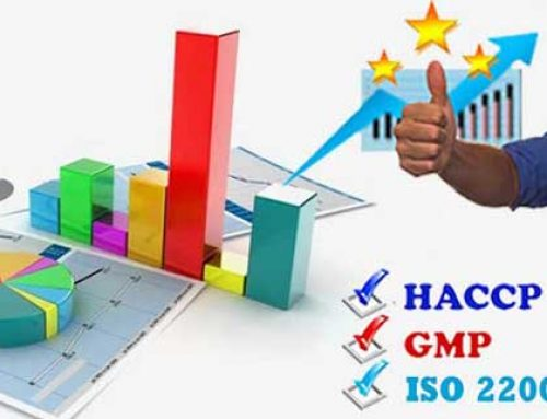 Tư vấn xây dựng hệ thống quản lý chất lượng ISO 22000 và HACCP