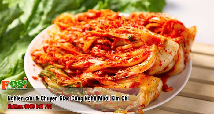 Nghiên cứu và phát triển sản phẩm Kim Chi - Cải Thảo Muối Chua
