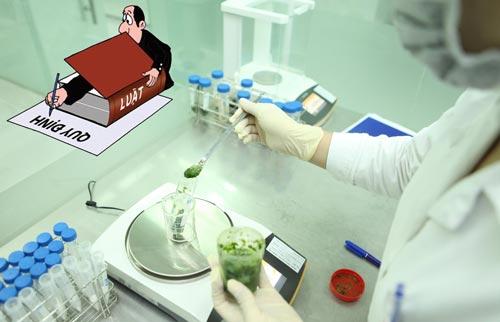 Quy định về kiểm nghiệm định kỳ thực phẩm theo Thông tư 19/2012/TT-BYT