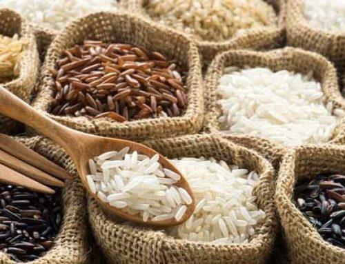Thủ tục đăng ký hồ sơ tự công bố chất lượng gạo